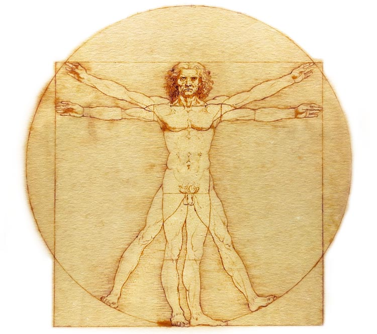 The-Vitruvian-Man.jpg