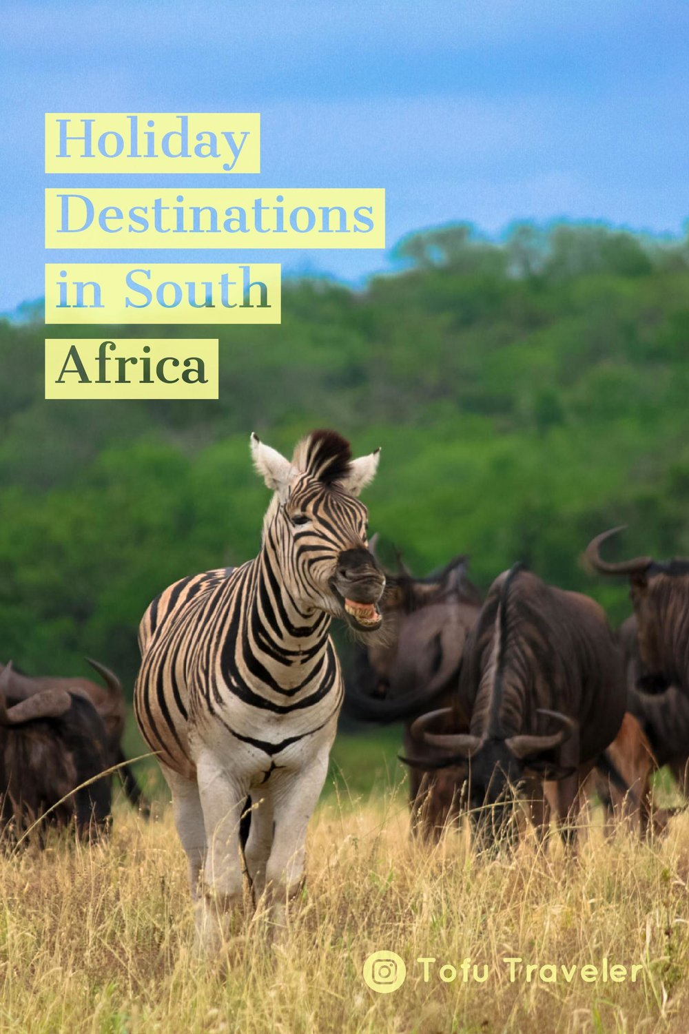 Holiday Destinations in South Africa