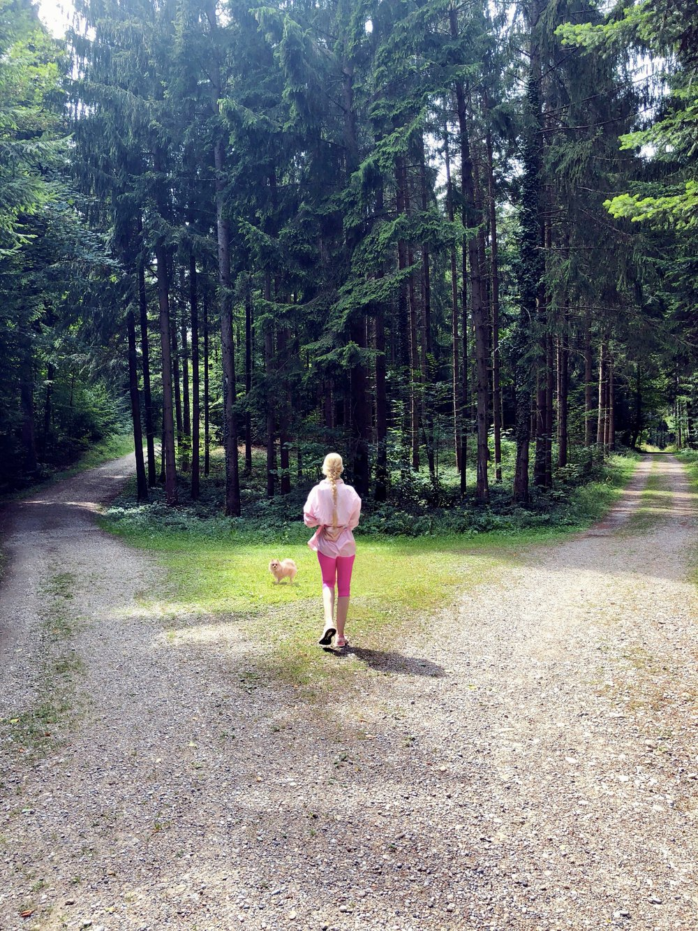 august-forest2018.jpg
