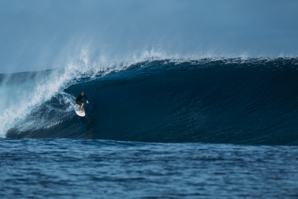 Chippa Wilson _Fiji_Photo Ord-424.jpg