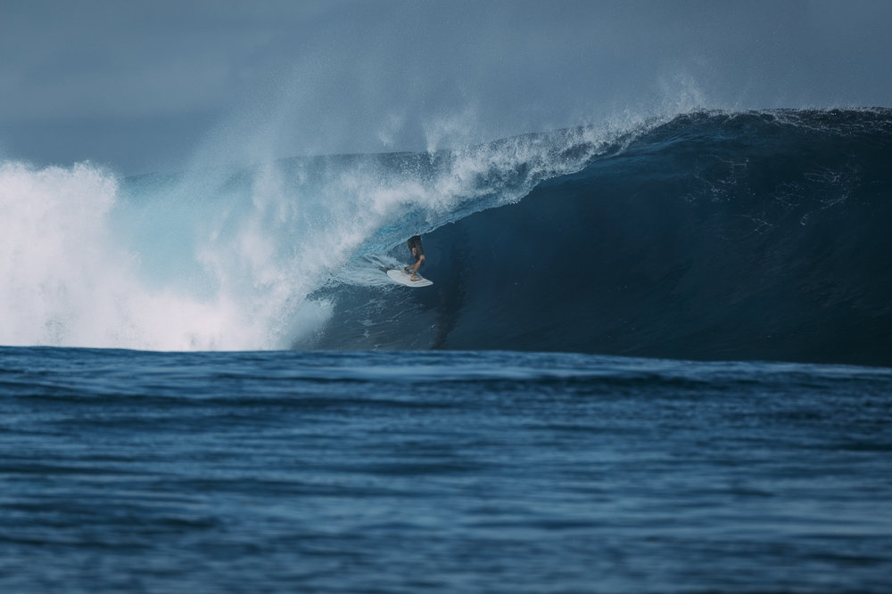 Chippa Wilson _Fiji_Photo Ord-496.jpg