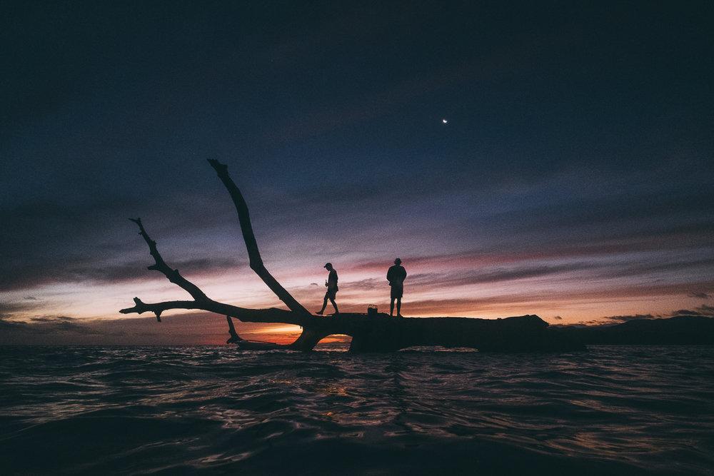Vonu _Fiji_Photo Ord-99.jpg