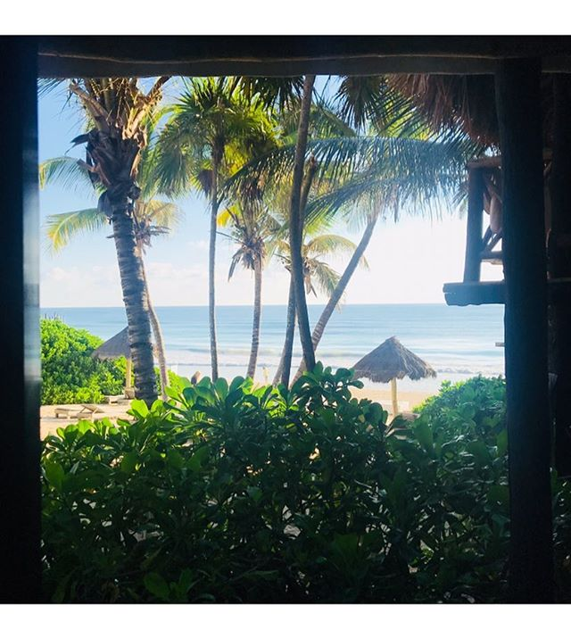 happy #Wednesday.. #morning view 💕#tulum  #blessed 🙏🤫 @wattsupphoto @nutritionnix @jodieboland @house_of_valiants @jonnyvaliant @hunter_valiant 💕