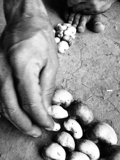 roasted cashews.jpg