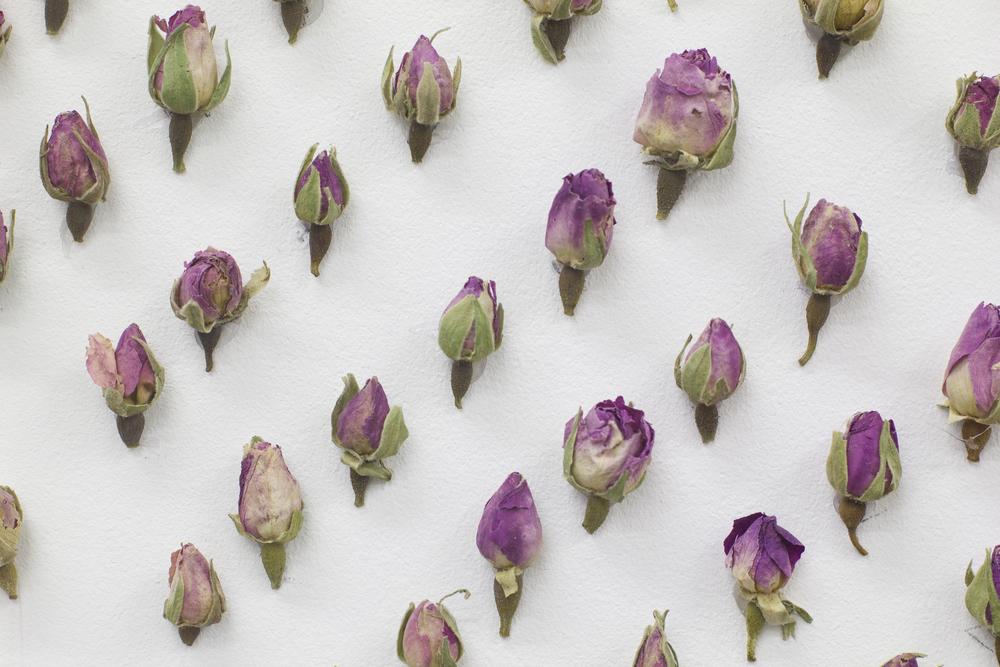 AirBNB Flowers 2.jpg