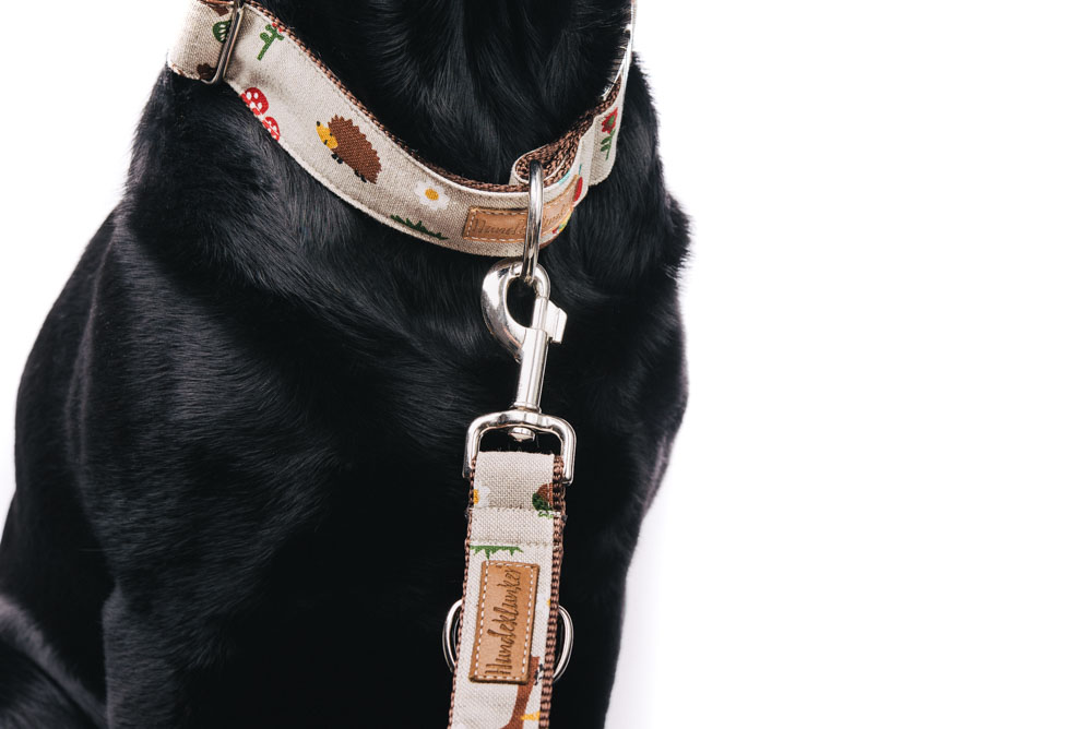 """""""Fuchs und Hase"""" von Hundeklunker als Set mit Leine und Halsband"""