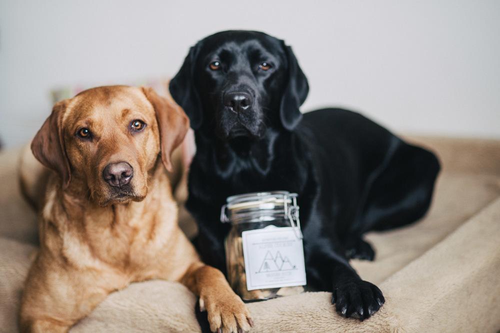 Finja und Summer mit ihren Hundekeksen
