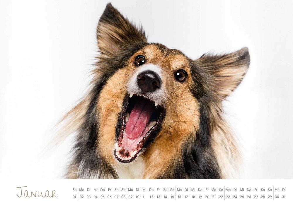Kalender_2017_02.jpg
