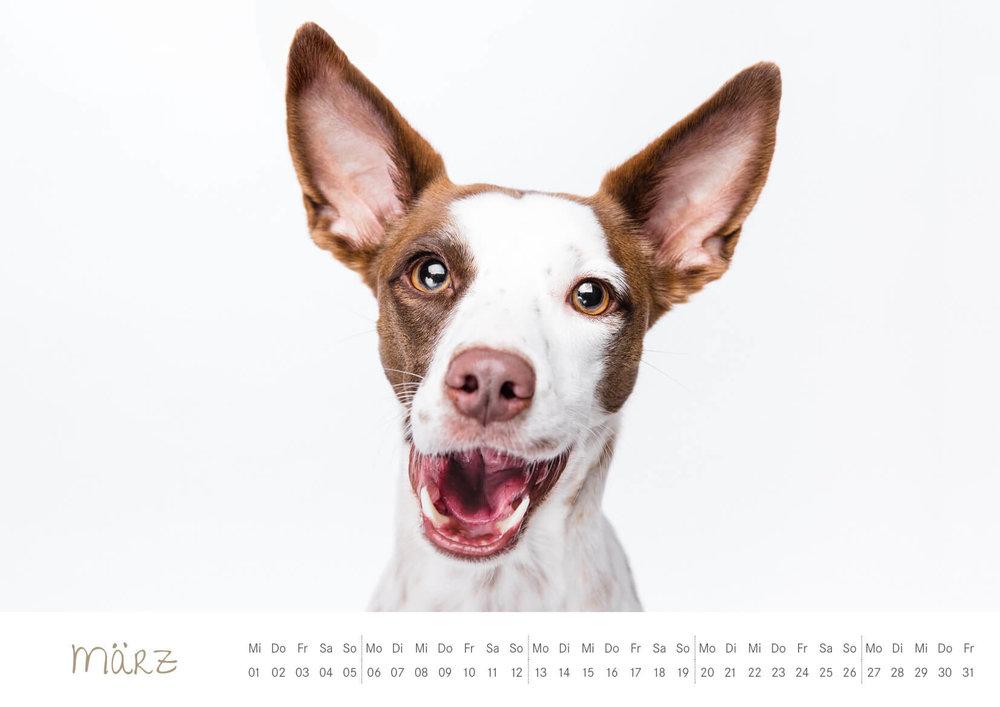 Kalender_2017_04.jpg