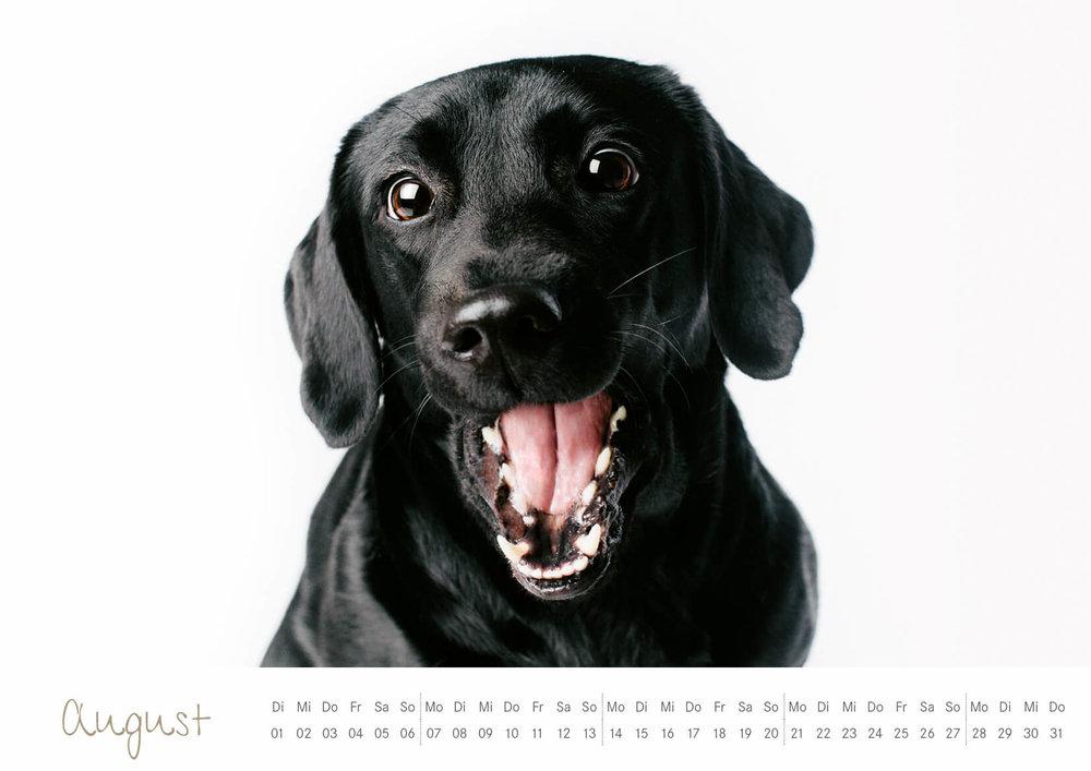 Kalender_2017_09.jpg