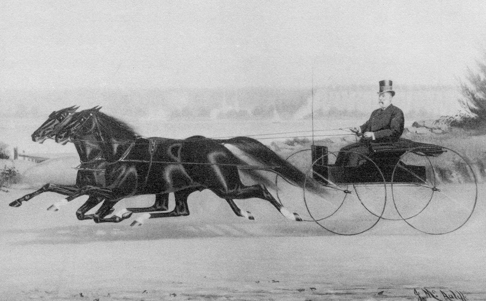 Shepherd F. Knapp driving his team of bays, Charlie Hogan and Sam Hill, circa 1870
