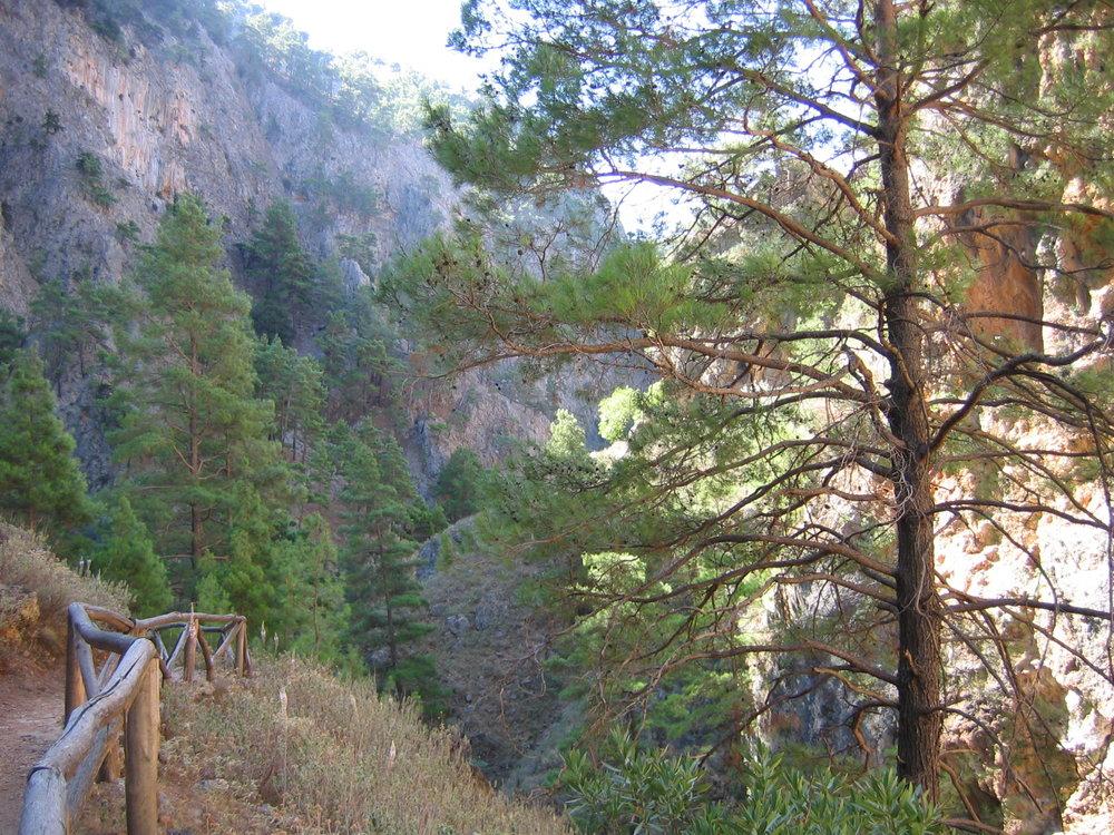 Agia Eirini gorge2.jpg