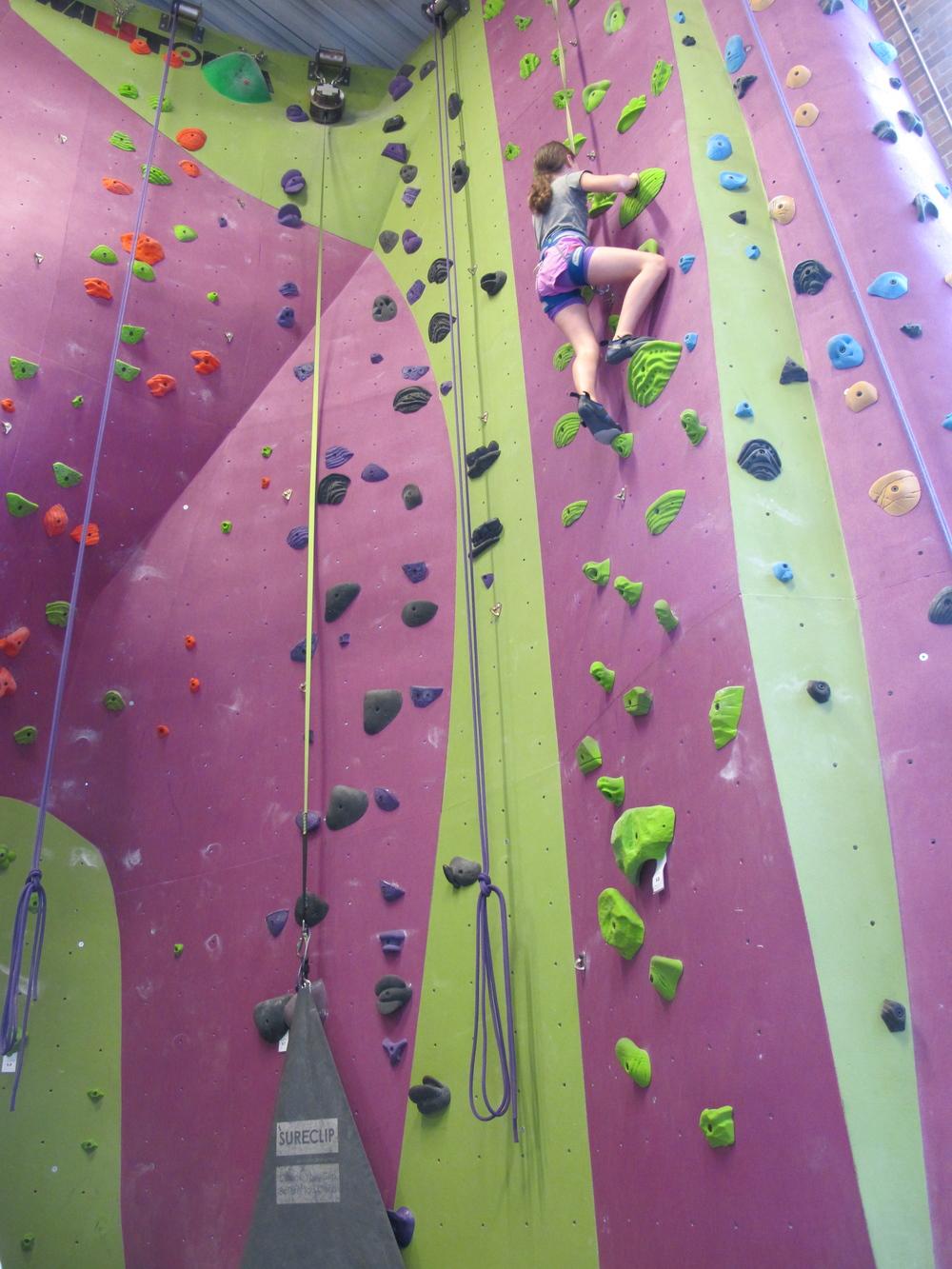 Climbing Gym Wall