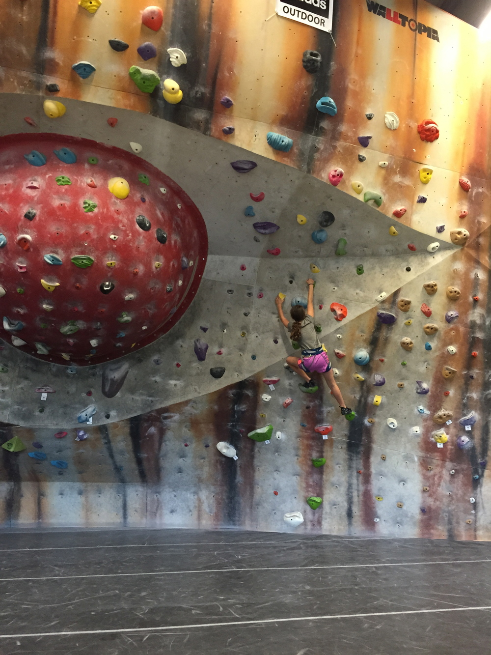 Boldering Wall (No Ropes!)