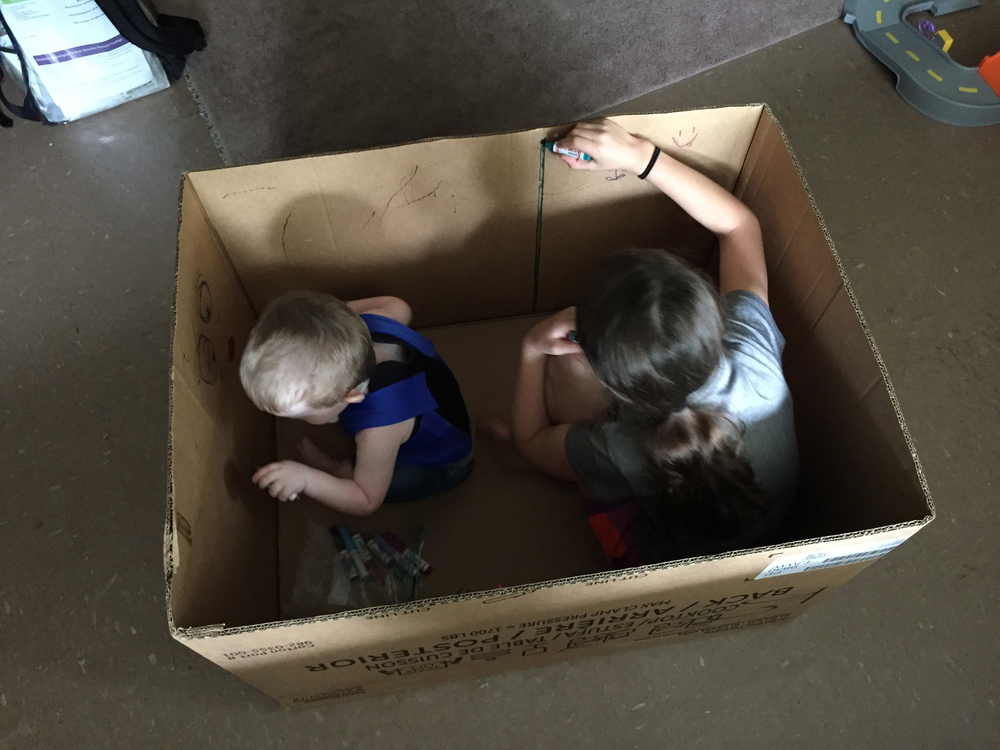 Cardboard box. Can't get more fun!