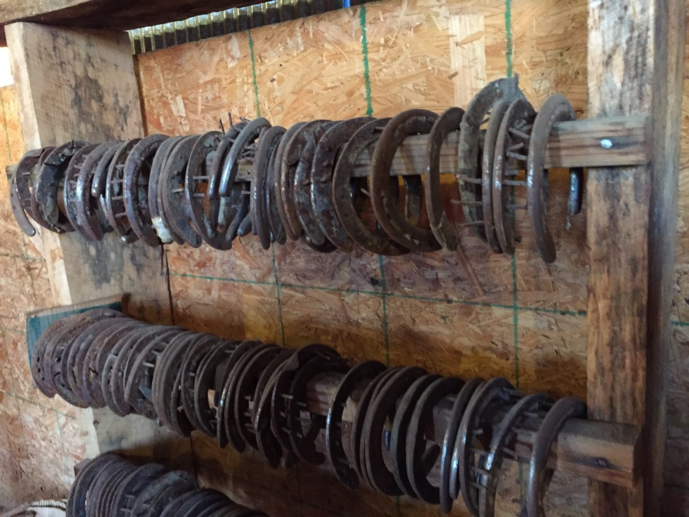 Horseshoes in Andrew's barn