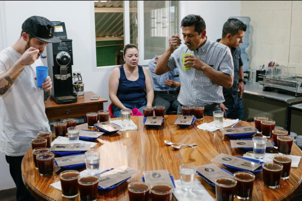 Aurelio Villatoro cupping El Amate and his other coffees with some of the Heart crew (Photo courtesy of Heart Roasters)