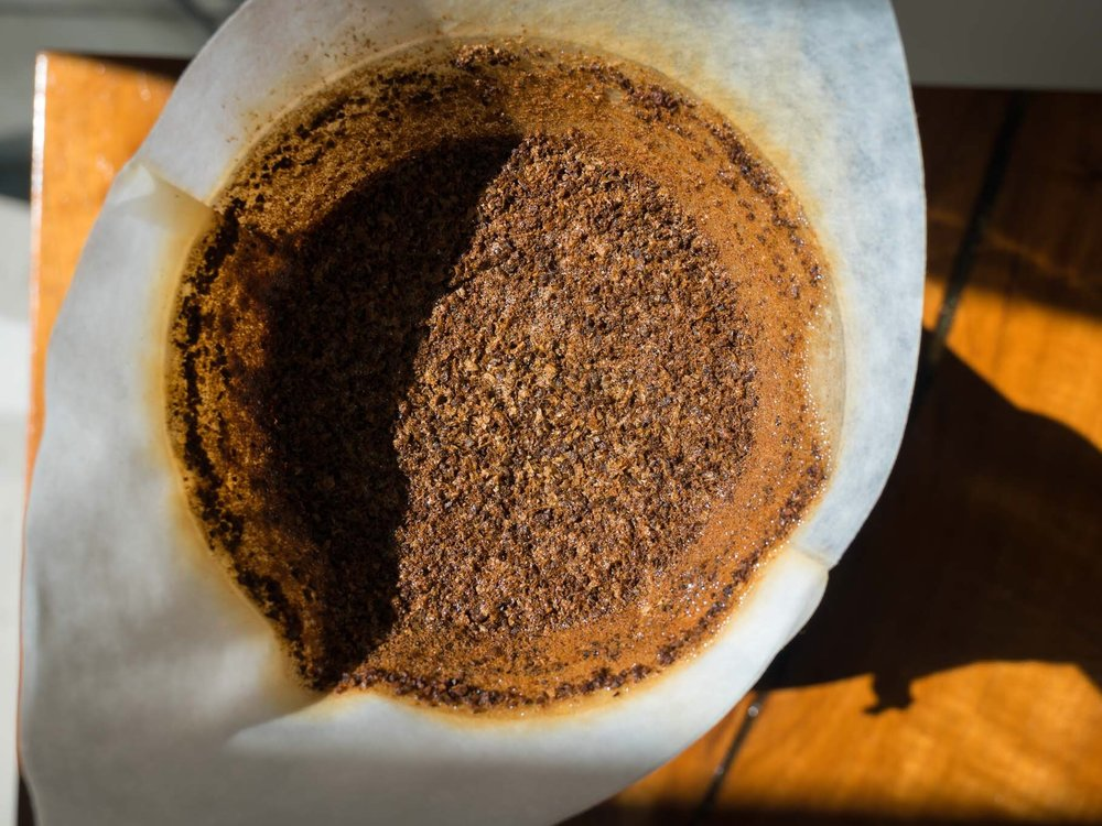 Chemex Brewed Bed of Coffee.jpg
