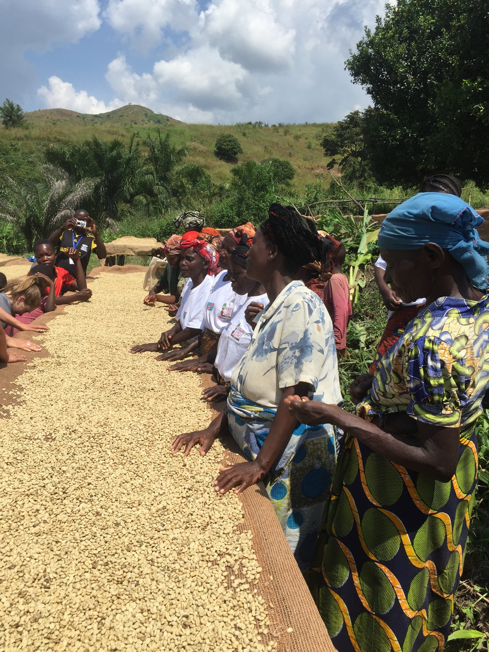 Muungano Cooperative, photo courtesy of Amavida