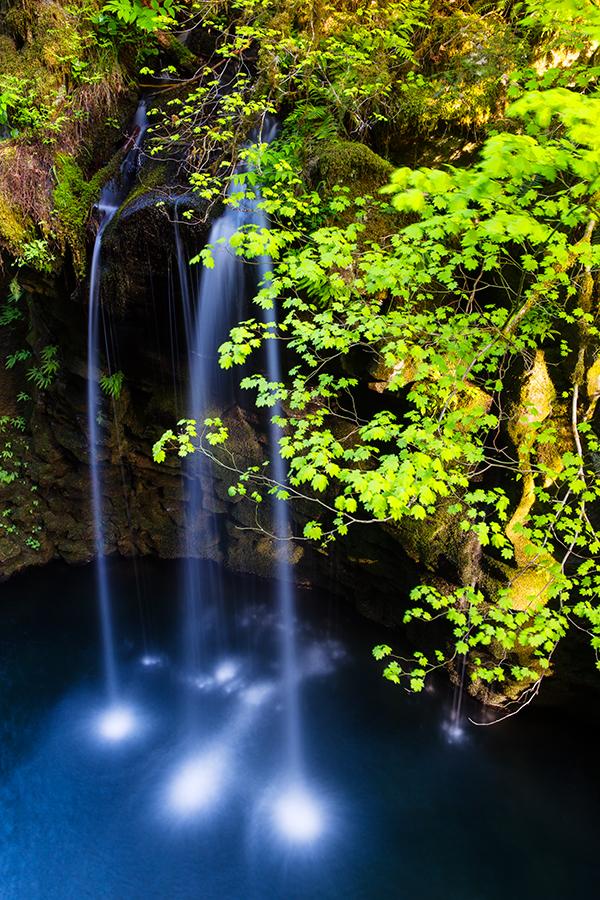 Landscapes- Oregon