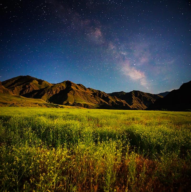 Landscapes- Washington/Idaho