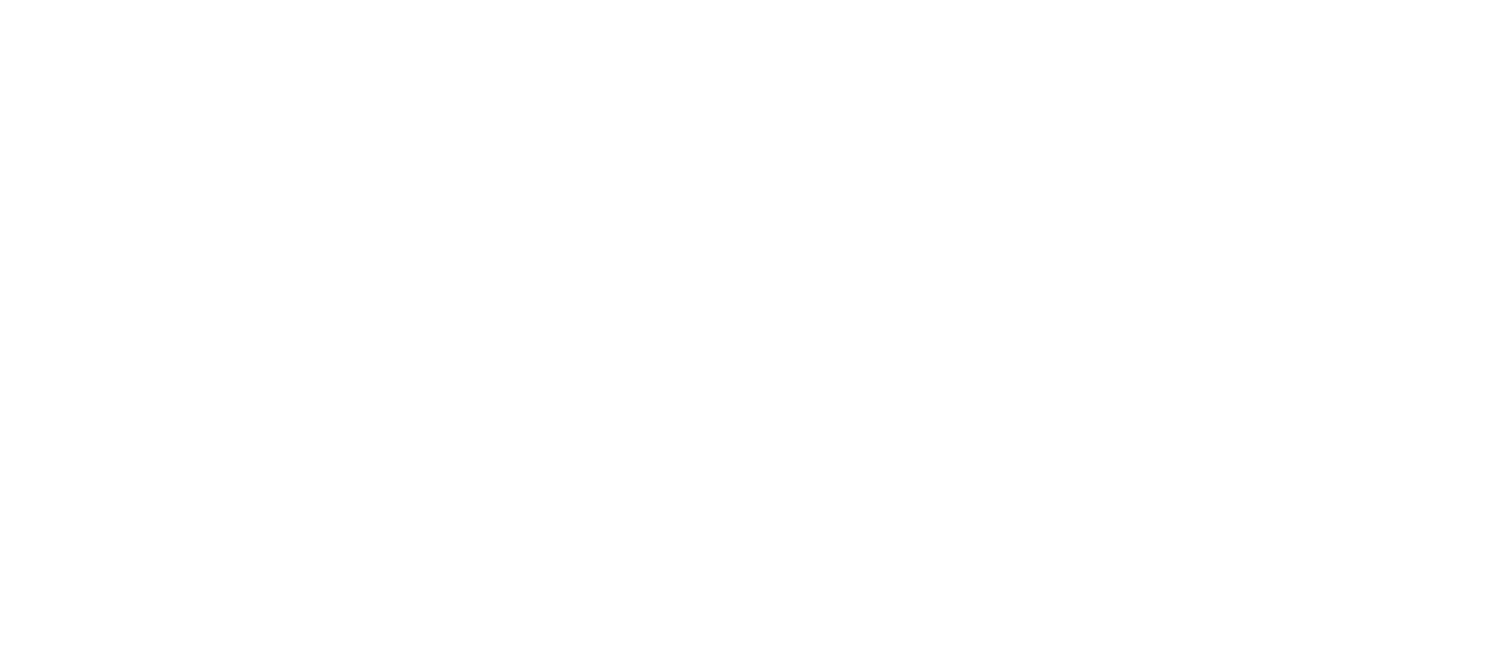 Smith & Mitchell, LLC