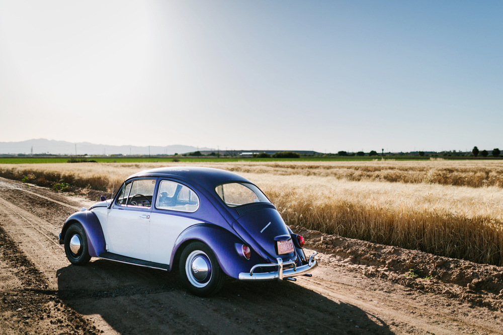 VW Beetle and Open Field