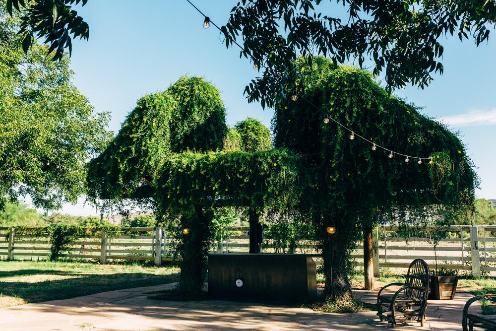 The Farm at South Mountain Bar