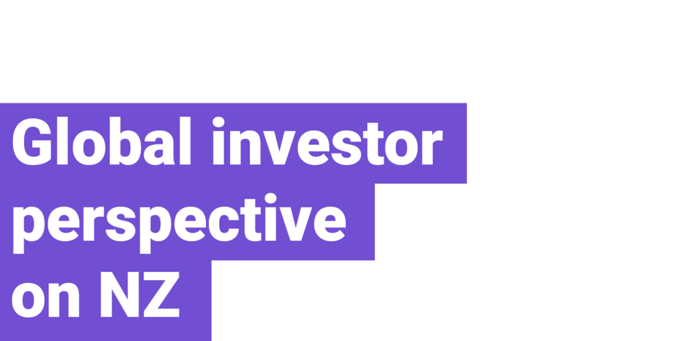 Global-investor-perspective-on-NZ.png