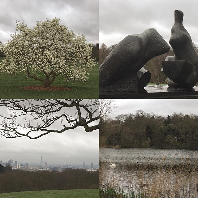 It was grey but #hampsteadheath is still such a beautiful place. Perfect walk for thoughts.