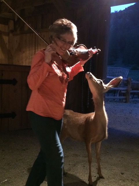 Sandy Burnett - Violin