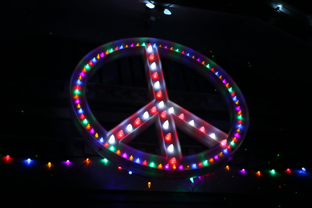 PEACE,LOVE,LIGHTS: 927 MERRIL (Detail)