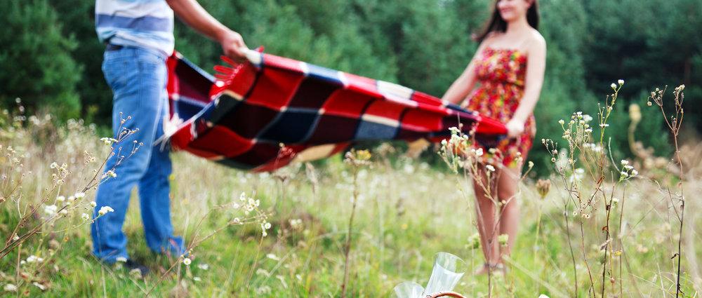 picnic-image-crop.jpg