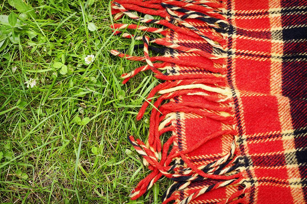 blanket-grass-web.jpg