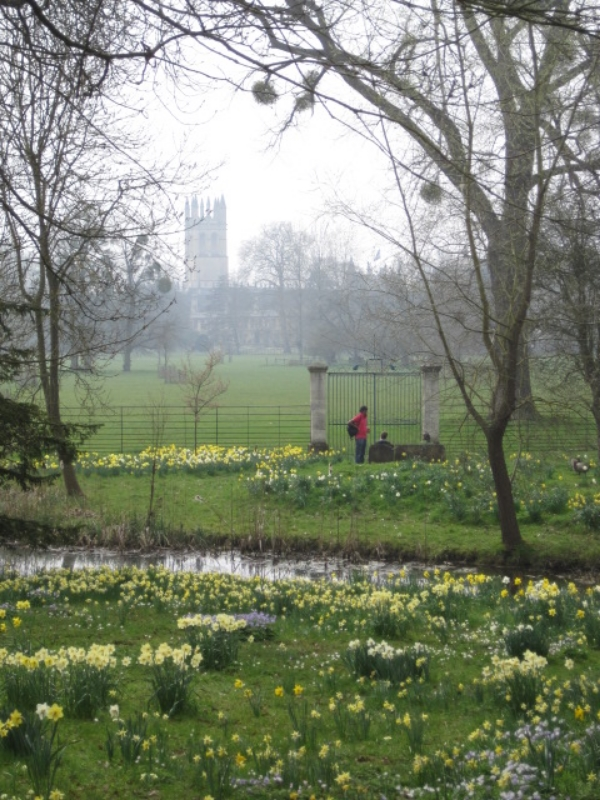 View of Magdalen Tower from Christ Church Meadow, Oxford, England