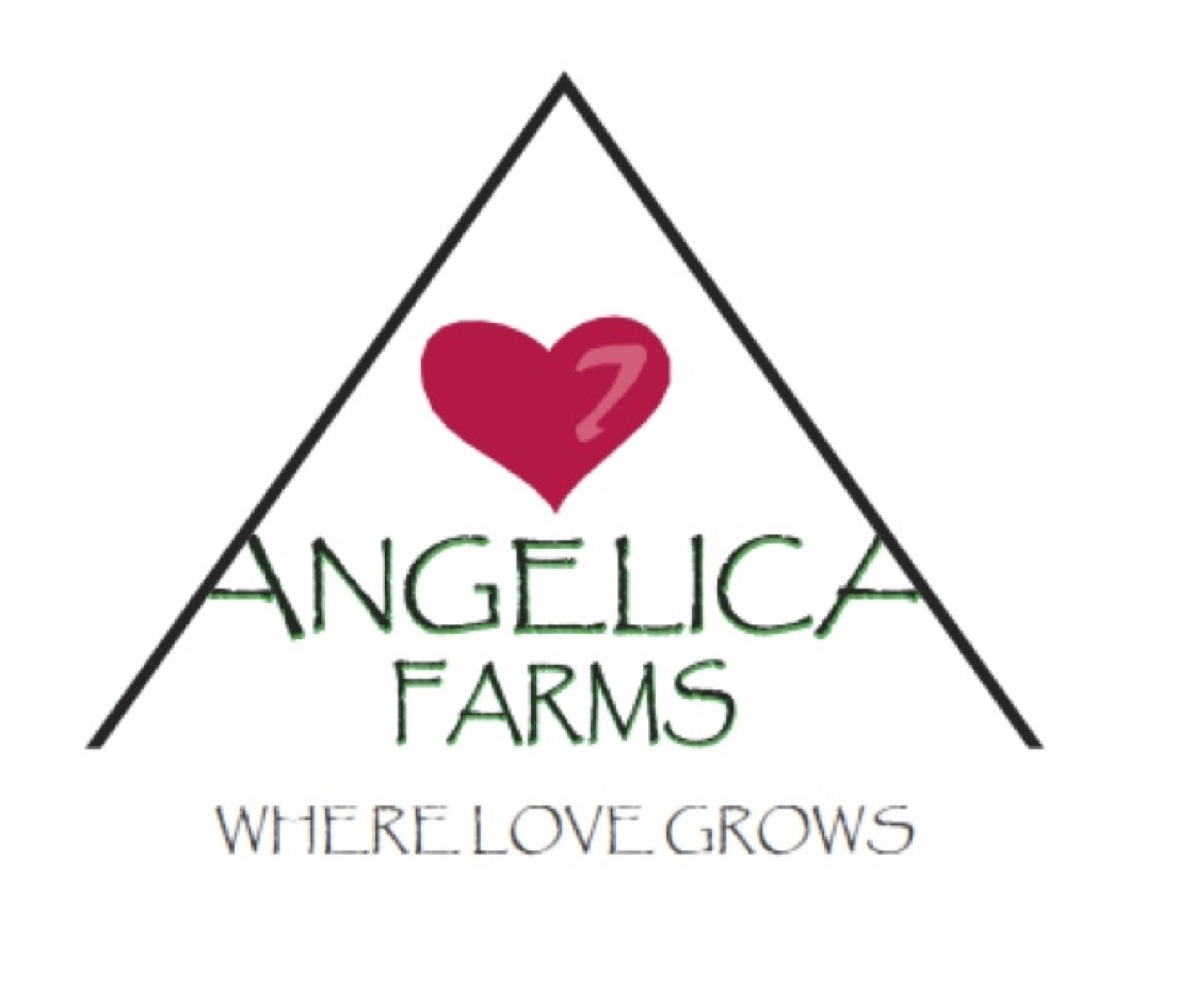 7 Angelica Farms