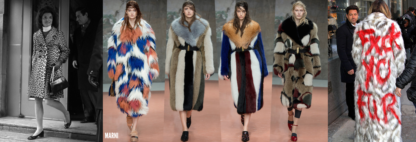 Fur: Luxurious Past, Controversial Future
