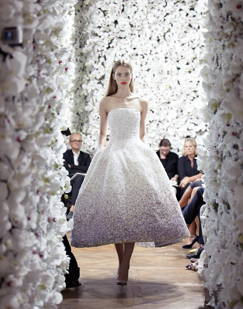 Dior Fall/Winter 2012 show featuring one million fresh flowers