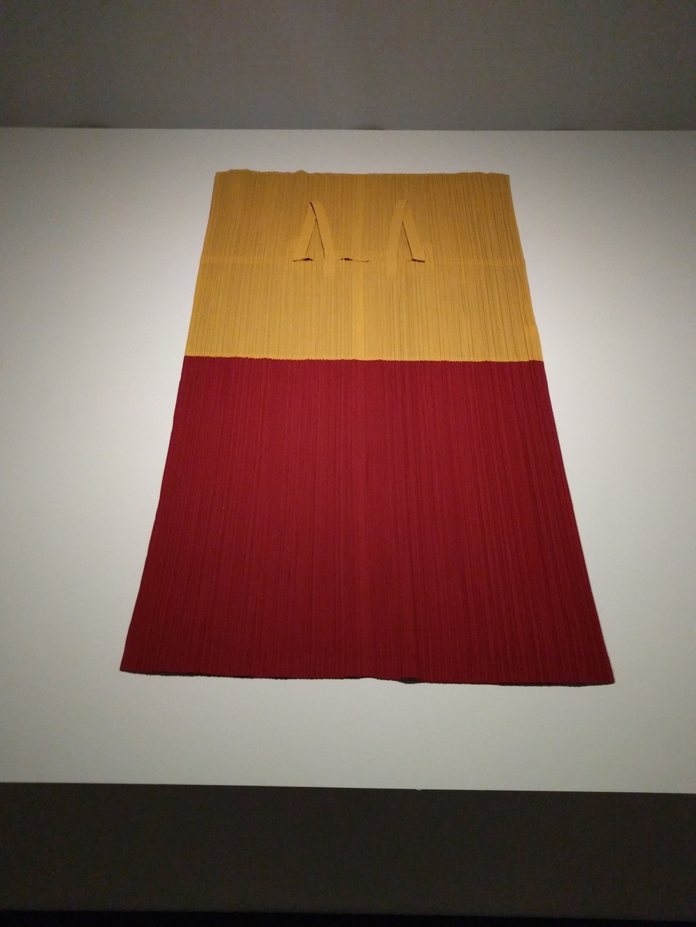 Same Miyake dress when laying flat