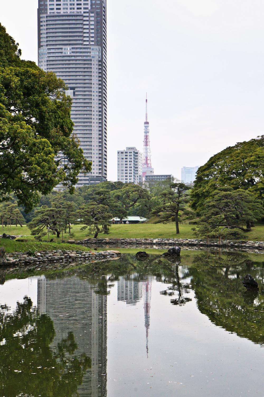 Hama-rikyu Gardens, Tokyo