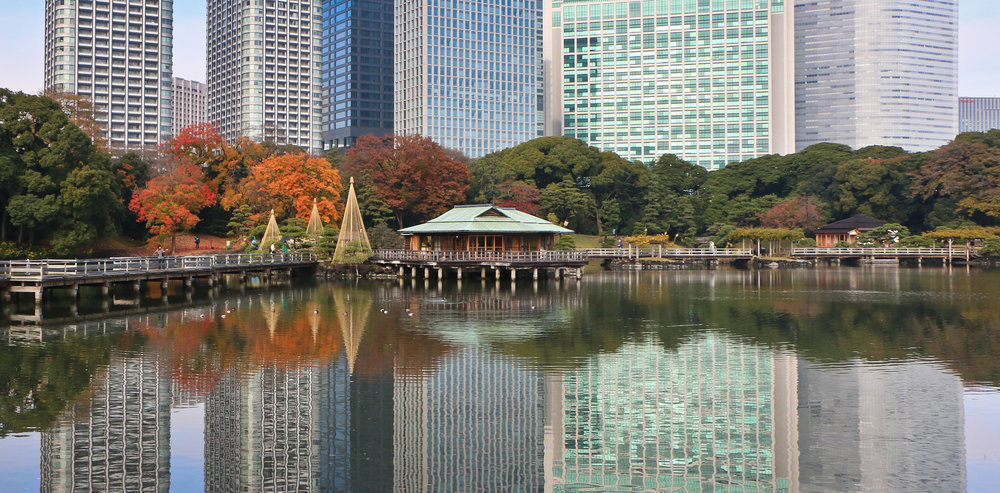 Hama-rikyu Gardens.   Once the private preserve of the Tokugawa shoguns.