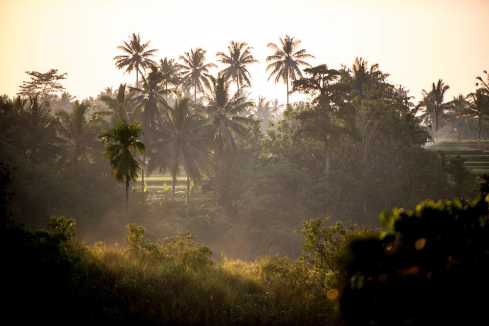 Bali Oct-Nov 2014-23.jpg