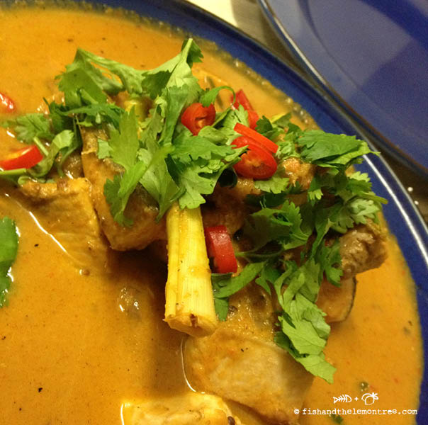 Balinese Swordfish Curry (Kari Ikan Todak) - Amie Mason copyright 2013
