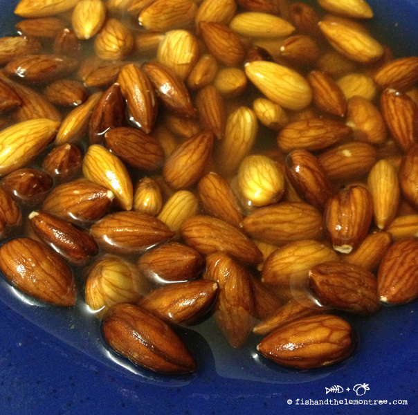 Almond Milk - Amie Mason copyright 2013