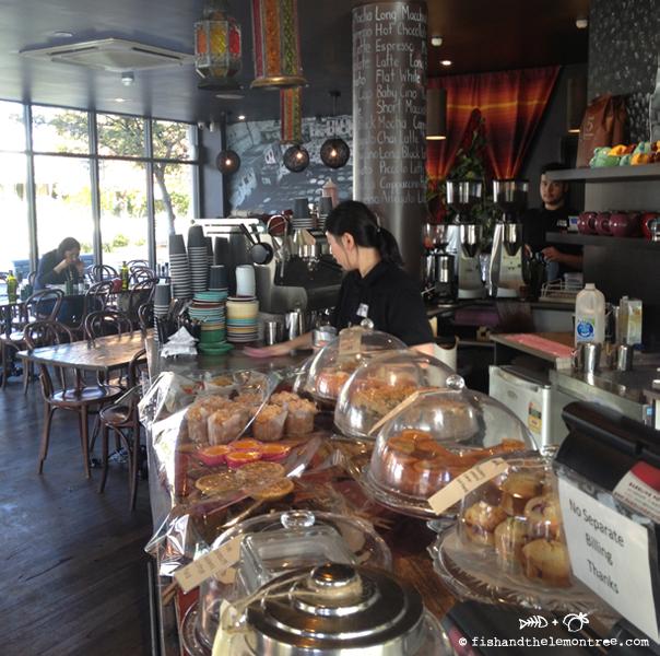 Cafe Fez - Amie Mason copyright 2013
