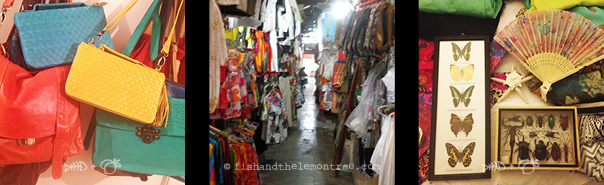 Leather bags, clothing markets, insect specimens - Amie Mason copyright 2013