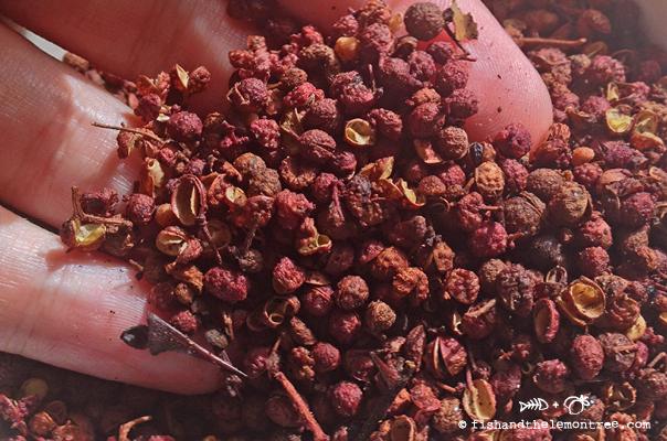 Szechuan Pepper - Amie Mason copyright 2013