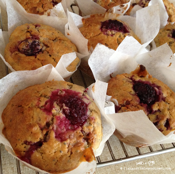 Pear Blackberry Muffins - Amie Mason copyright 2013