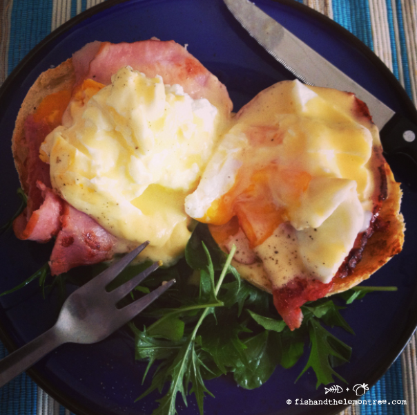 Hollandaise - Amie Mason copyright 2013