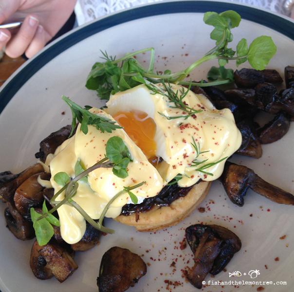 Stone baked mushrooms with eggs and hollandaise - Amie Mason copyright 2013